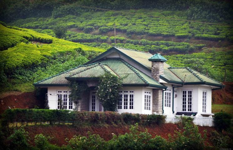Những ngôi nhà nghỉ bằng gỗ gần gũi thiên nhiên