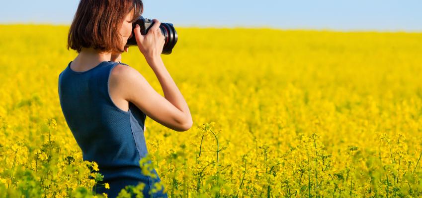 Chụp hình được nhiều người theo đuổi như là nghề tay trái.