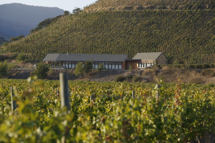 1.Quinta de Maipo House and vineyard_resize