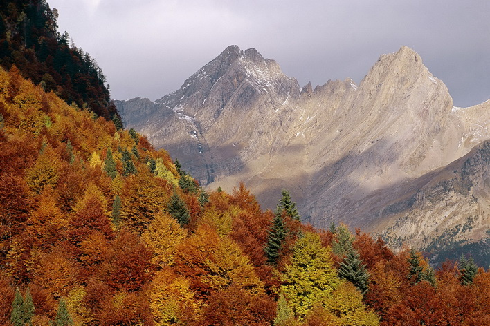 Pyrenees valley. Huesca province. Aragon. Spain.