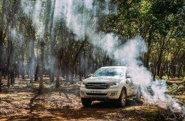 Ford Vietnam tiep tuc tang truong va dat muc 2.451 xe trong thang 5