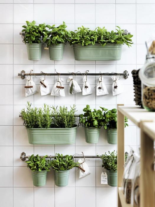 Khoảng xanh trong gian bếp khiến căn phòng trở nên tươi mát hơn