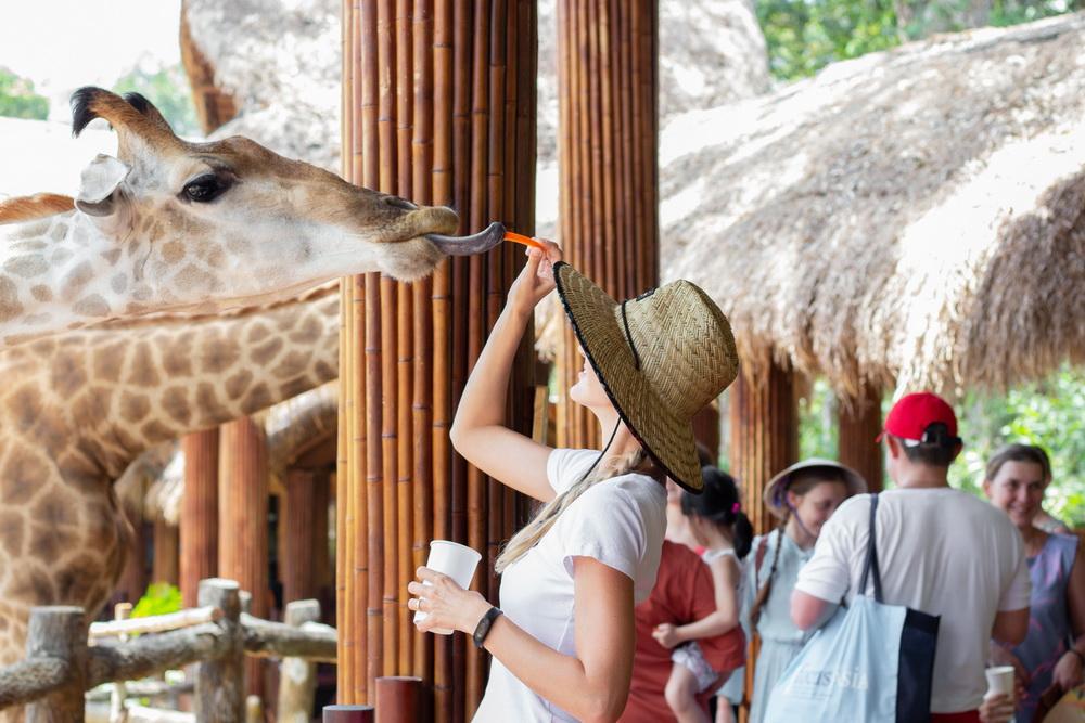 nghỉ dưỡng Intercontinental Phu Quoc