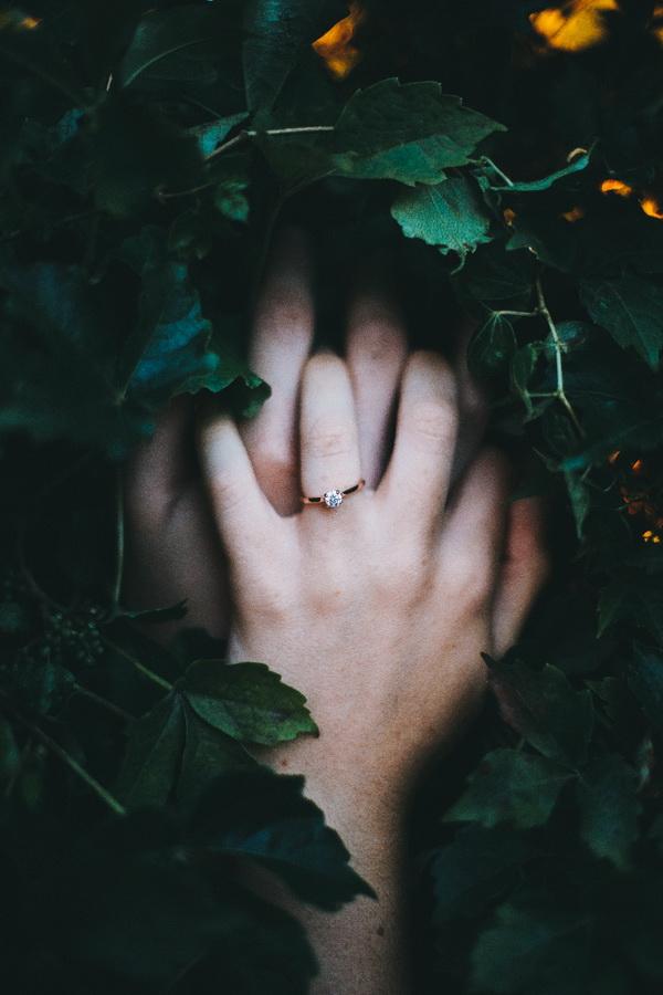 Hôn nhân đồng hành và hôn nhân truyền thống